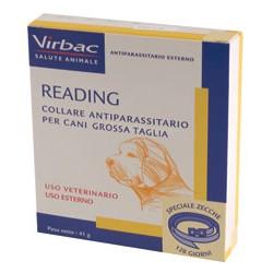 READING * COLLARE ANTIPARAS. CANE GRANDE